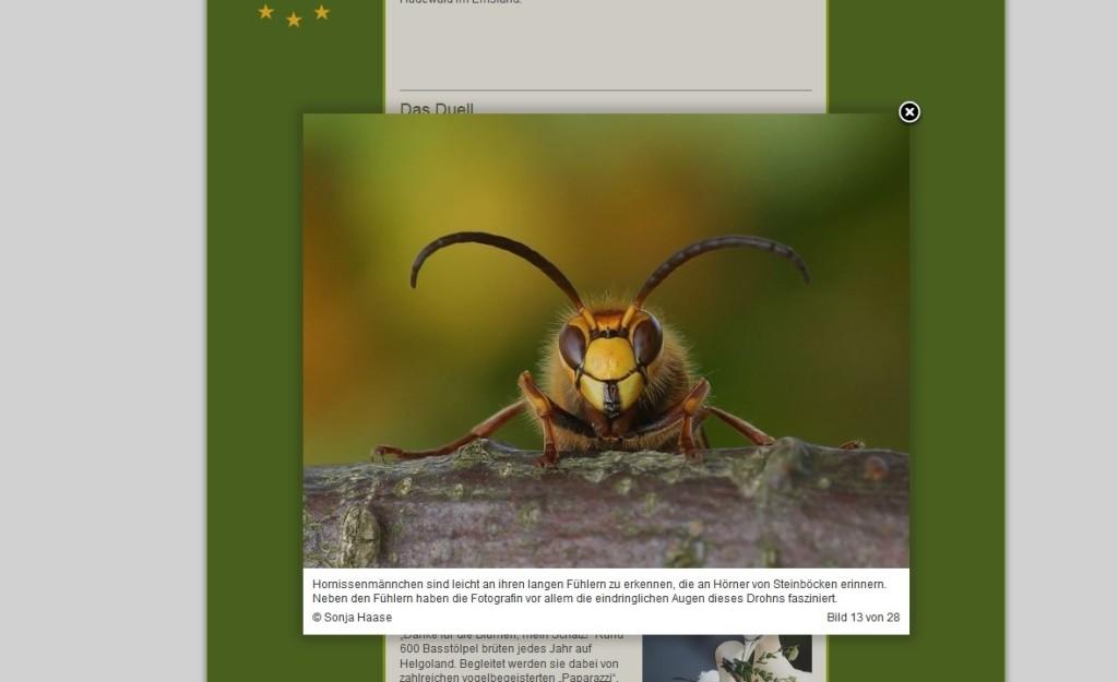 Euronatur, Bild 13 von 28