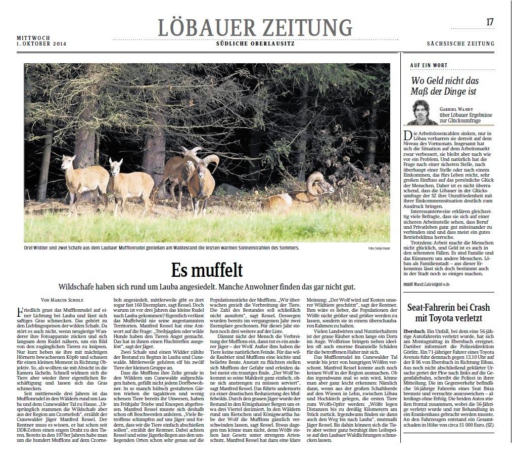 Zeitungsartikel Sächsische Zeitung vom 01.10.2014